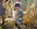 kukoricaszedés 005.jpg