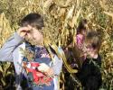 kukoricaszedés 017.jpg